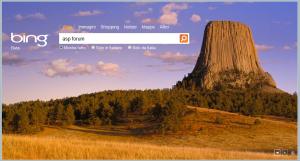 Chiave di ricerca su Bing: asp forum